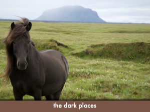 "Icelandic pony; slide text: ""the dark places"""